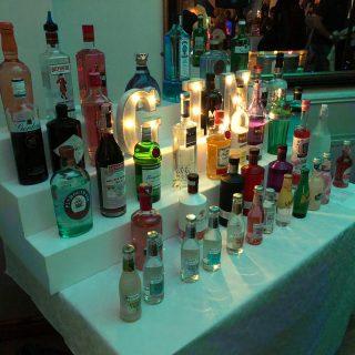 gin-fest